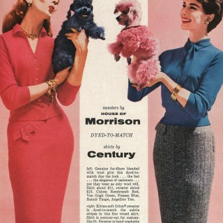 Colour your poodle to match your sweater, 50s style